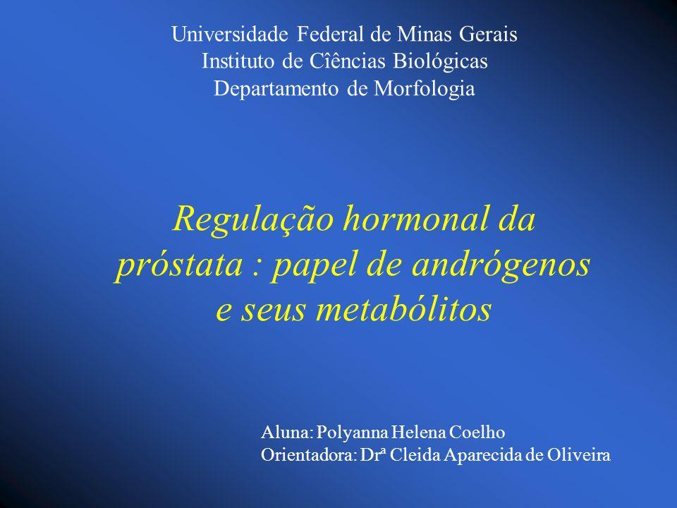 Regulação hormonal da próstata : papel de andrógenos e seus metabólitos Universidade Federal de Minas Gerais Instituto de Cîências Biológicas Departam