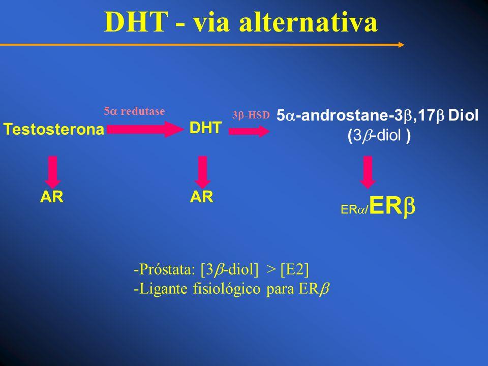 DHT - via alternativa 3 -HSD 5 redutase -Próstata: [3 -diol] > [E2] -Ligante fisiológico para ER Testosterona DHT 5 -androstane-3,17 Diol (3 -diol ) A