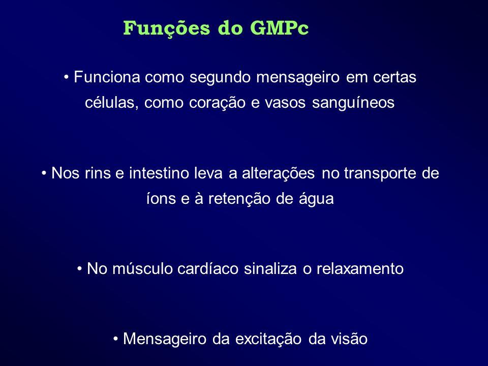 Funções do GMPc Funciona como segundo mensageiro em certas células, como coração e vasos sanguíneos Nos rins e intestino leva a alterações no transpor
