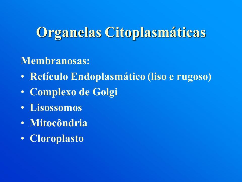 Membranosas: Retículo Endoplasmático (liso e rugoso) Complexo de Golgi Lisossomos Mitocôndria Cloroplasto