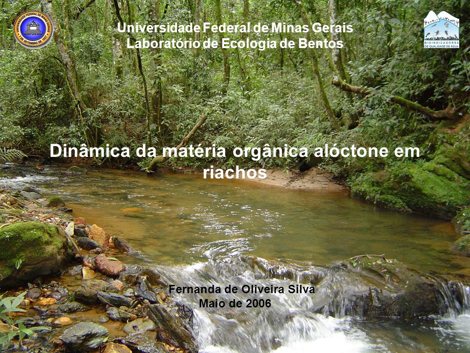 Universidade Federal de Minas Gerais Laboratório de Ecologia de Bentos Dinâmica da matéria orgânica alóctone em riachos Fernanda de Oliveira Silva Mai