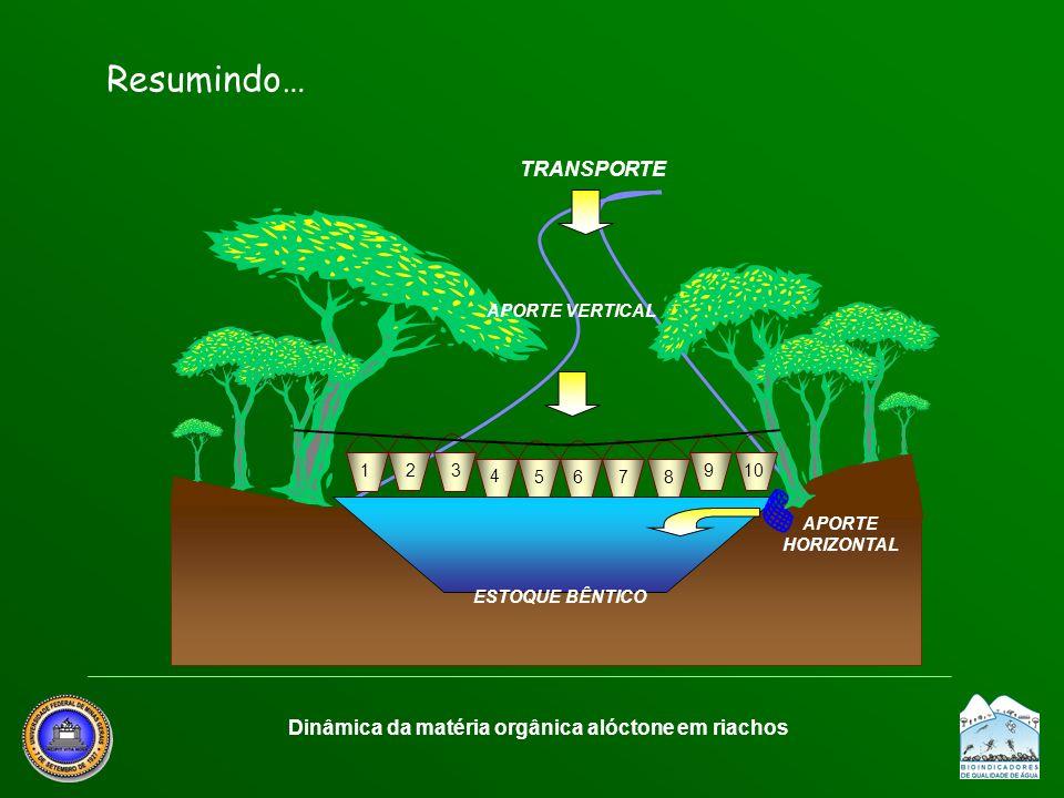 APORTE VERTICAL 1 678 91023 4 5 ESTOQUE BÊNTICO APORTE HORIZONTAL Dinâmica da matéria orgânica alóctone em riachos TRANSPORTE Resumindo…