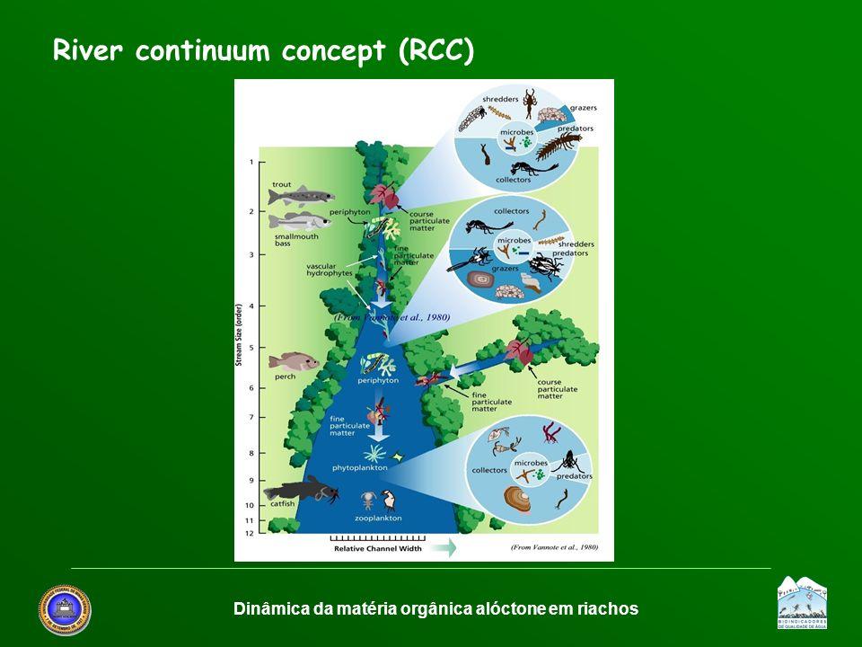 Dinâmica da matéria orgânica alóctone em riachos River continuum concept (RCC)