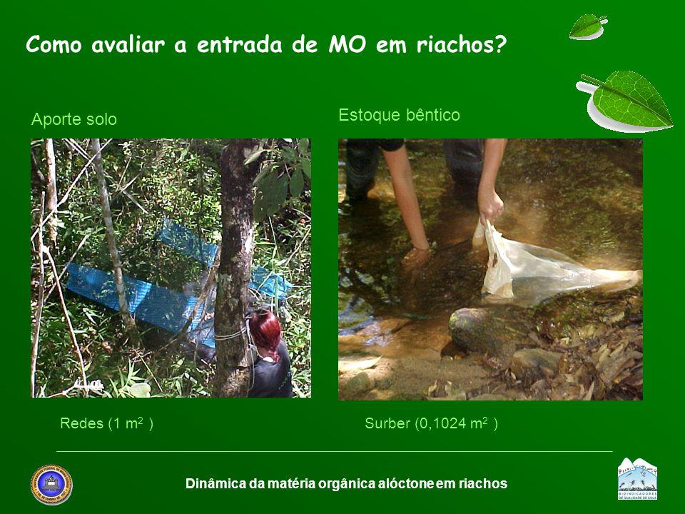 Dinâmica da matéria orgânica alóctone em riachos Como avaliar a entrada de MO em riachos? Redes (1 m 2 )Surber (0,1024 m 2 ) Aporte solo Estoque bênti