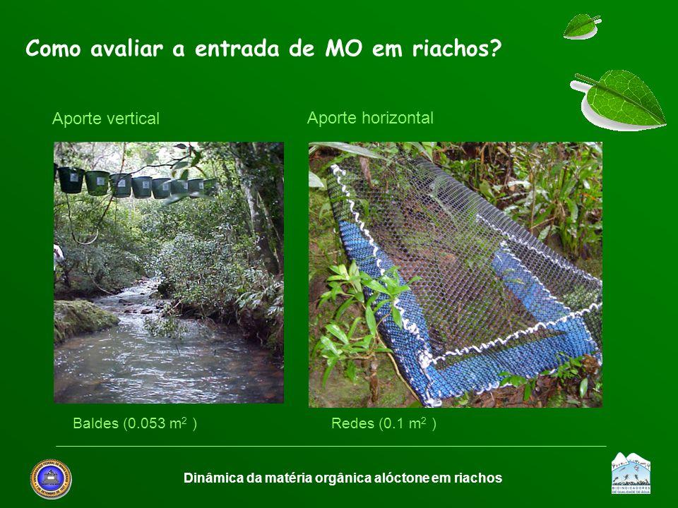 Dinâmica da matéria orgânica alóctone em riachos Como avaliar a entrada de MO em riachos? Aporte vertical Aporte horizontal Baldes (0.053 m 2 ) Redes