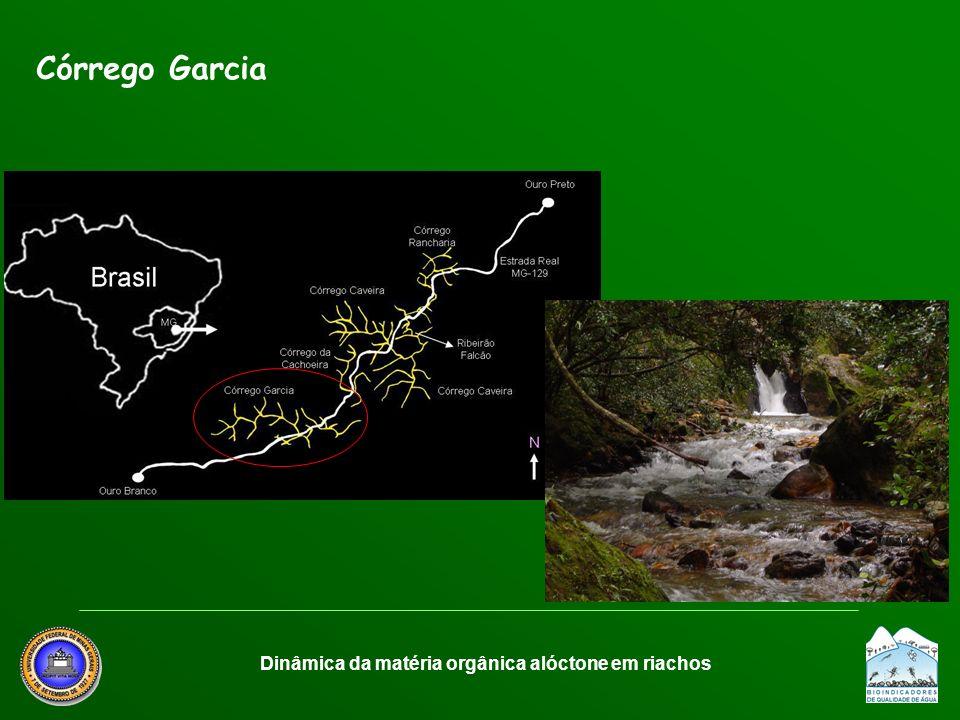 Córrego Garcia Dinâmica da matéria orgânica alóctone em riachos
