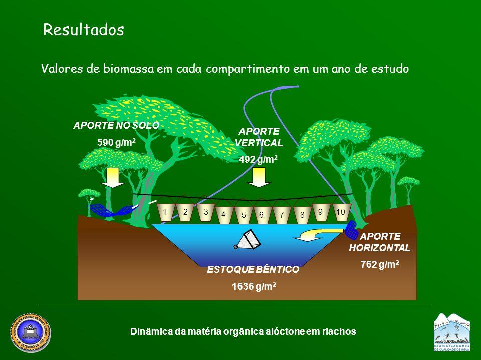 Resultados Valores de biomassa em cada compartimento em um ano de estudo Dinâmica da matéria orgânica alóctone em riachos