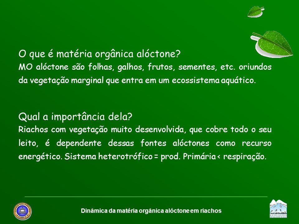 Dinâmica da matéria orgânica alóctone em riachos O que é matéria orgânica alóctone? MO alóctone são folhas, galhos, frutos, sementes, etc. oriundos da