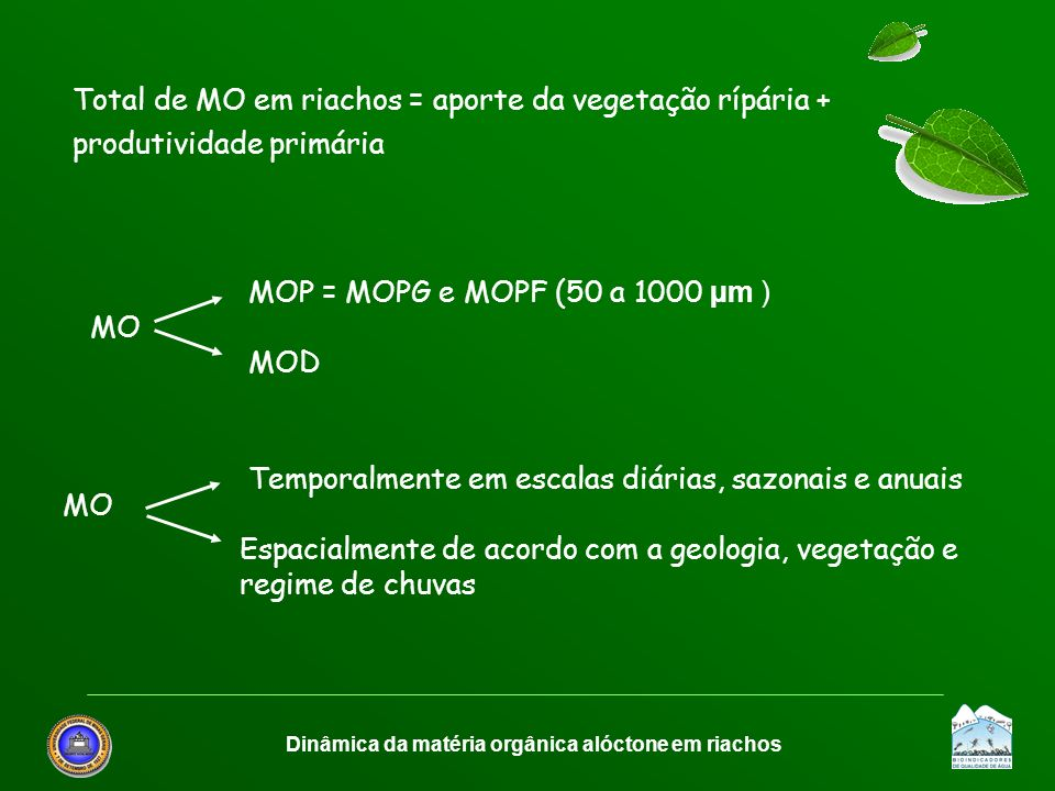 Dinâmica da matéria orgânica alóctone em riachos Total de MO em riachos = aporte da vegetação rípária + produtividade primária MOP = MOPG e MOPF (50 a