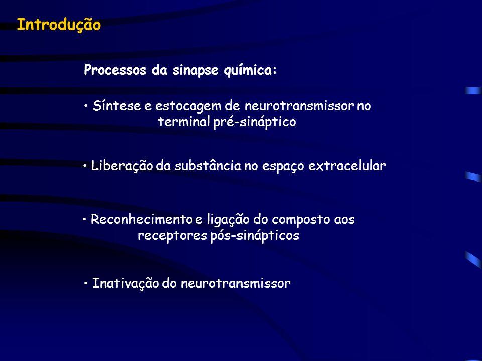 Processos da sinapse química: Síntese e estocagem de neurotransmissor no terminal pré-sináptico Liberação da substância no espaço extracelular Reconhe