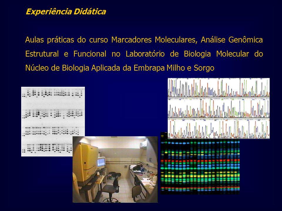 Experiência Didática Aulas práticas do curso Marcadores Moleculares, Análise Genômica Estrutural e Funcional no Laboratório de Biologia Molecular do N