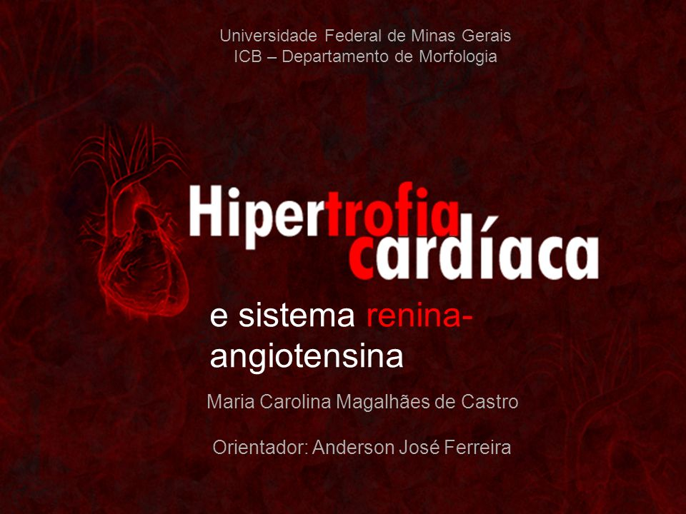 Universidade Federal de Minas Gerais ICB – Departamento de Morfologia Maria Carolina Magalhães de Castro Orientador: Anderson José Ferreira e sistema renina- angiotensina
