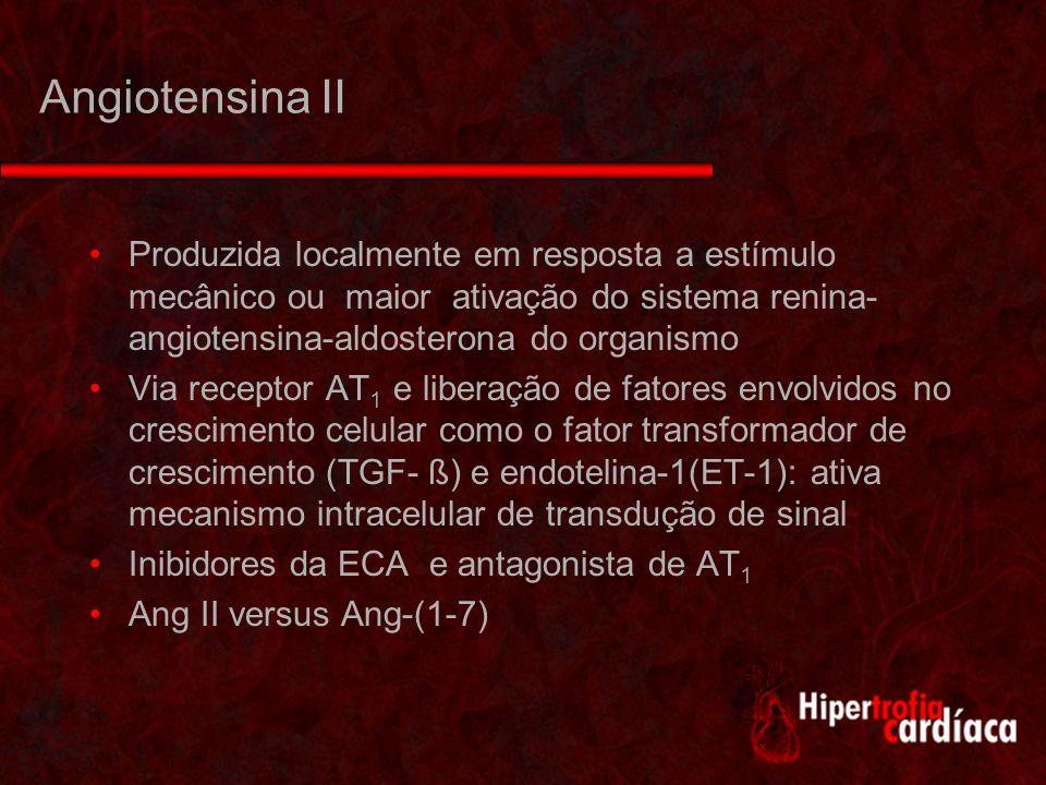 Angiotensina II Produzida localmente em resposta a estímulo mecânico ou maior ativação do sistema renina- angiotensina-aldosterona do organismo Via receptor AT 1 e liberação de fatores envolvidos no crescimento celular como o fator transformador de crescimento (TGF- ß) e endotelina-1(ET-1): ativa mecanismo intracelular de transdução de sinal Inibidores da ECA e antagonista de AT 1 Ang II versus Ang-(1-7)