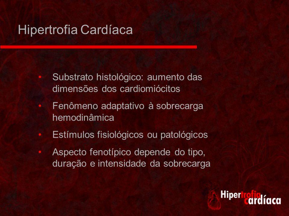Cardiomiócitos lauca.usa.cb.cl/ histologia/guiaCP9.htm Fibras estriadas cardíacas Discos intercalares Um ou dois núcleos Capacidade extremamente reduzida de divisão