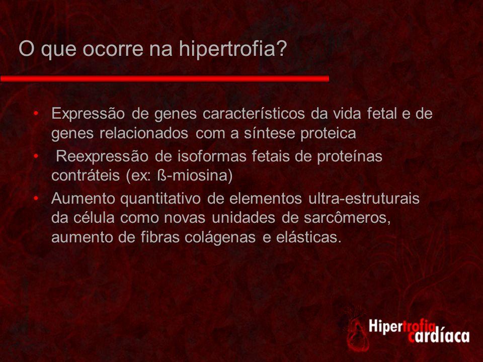 O que ocorre na hipertrofia.