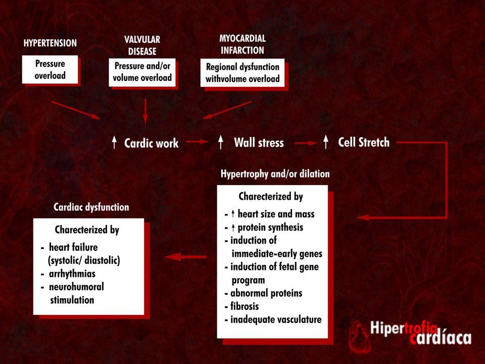 Como ocorre a sinalização intracelular.