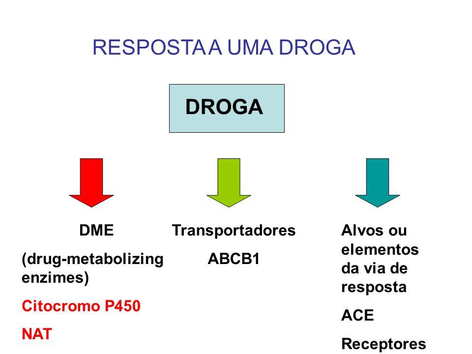 RESPOSTA A UMA DROGA DROGA DME (drug-metabolizing enzimes) Citocromo P450 NAT Transportadores ABCB1 Alvos ou elementos da via de resposta ACE Receptor