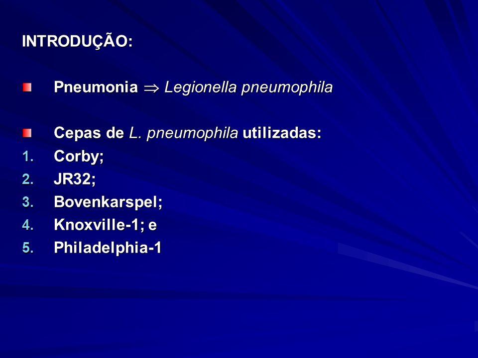 INTRODUÇÃO: Pneumonia Legionella pneumophila Cepas de L.