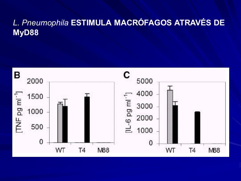 L. Pneumophila ESTIMULA MACRÓFAGOS ATRAVÉS DE MyD88