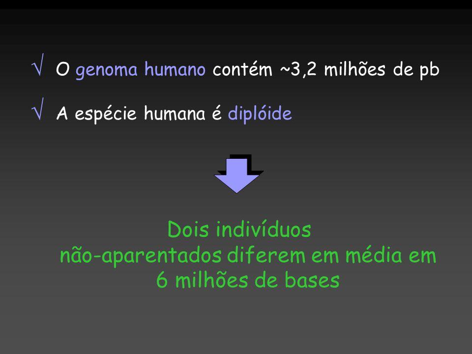 Dois indivíduos não-aparentados diferem em média em 6 milhões de bases O genoma humano contém ~3,2 milhões de pb A espécie humana é diplóide