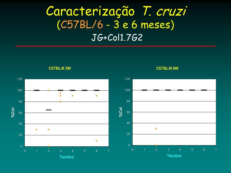Caracterização T. cruzi (C57BL/6 - 3 e 6 meses) JG+Col1.7G2