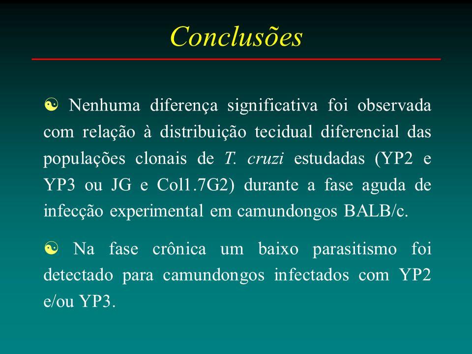 Conclusões Nenhuma diferença significativa foi observada com relação à distribuição tecidual diferencial das populações clonais de T.
