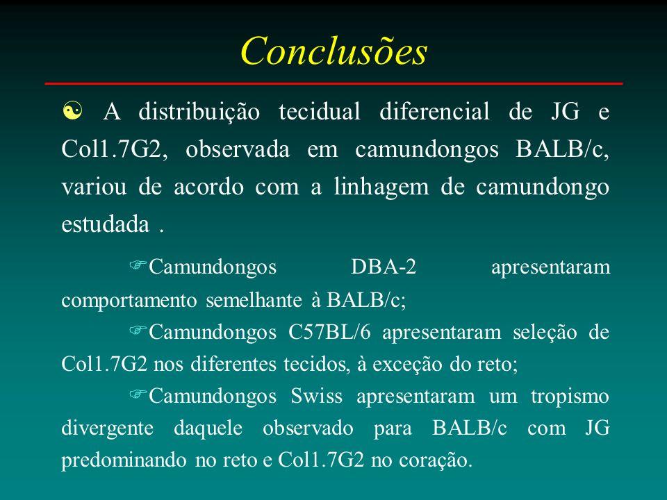 Conclusões A distribuição tecidual diferencial de JG e Col1.7G2, observada em camundongos BALB/c, variou de acordo com a linhagem de camundongo estudada.