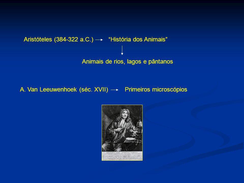 Aristóteles (384-322 a.C.) História dos Animais Animais de rios, lagos e pântanos A. Van Leeuwenhoek (séc. XVII) Primeiros microscópios