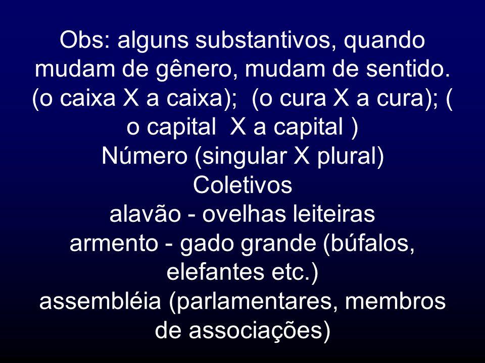 Obs: alguns substantivos, quando mudam de gênero, mudam de sentido. (o caixa X a caixa); (o cura X a cura); ( o capital X a capital ) Número (singular