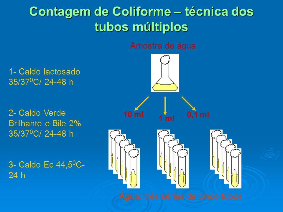 Fermentação: Caldo lactosado Confirmação: Caldo verde brilhante E.coli: fluorecência (UV)