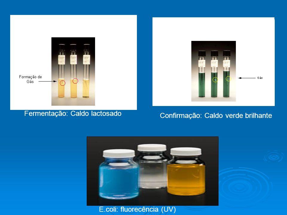Metodologia da Membrana Filtrante (MF) Filtragem da amostra