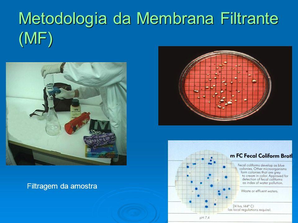 Substrato Cromogênico/fluorogênico Teste P/A Adição do meio com substrato à amostra Incubação por 24h.Resultados: Incolor:Negativo; Amarelo:Coliforme total +; Azul:Coliforme E.