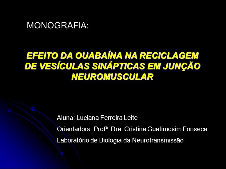 MONOGRAFIA: EFEITO DA OUABAÍNA NA RECICLAGEM DE VESÍCULAS SINÁPTICAS EM JUNÇÃO NEUROMUSCULAR Aluna: Luciana Ferreira Leite Orientadora: Profª. Dra. Cr