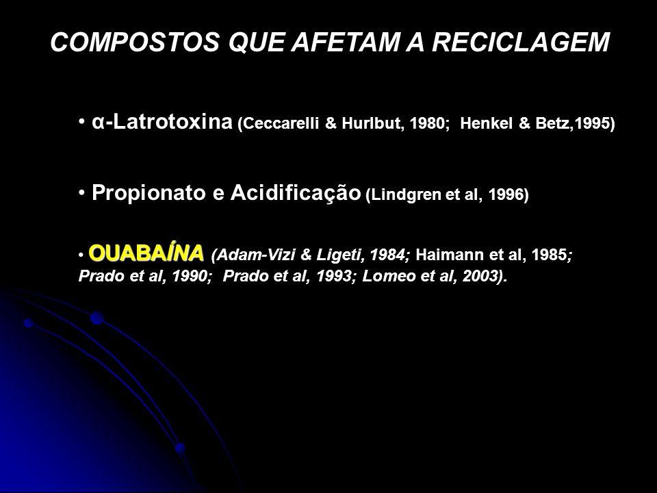 COMPOSTOS QUE AFETAM A RECICLAGEM OUABAÍNA OUABAÍNA (Adam-Vizi & Ligeti, 1984; Haimann et al, 1985; Prado et al, 1990; Prado et al, 1993; Lomeo et al,