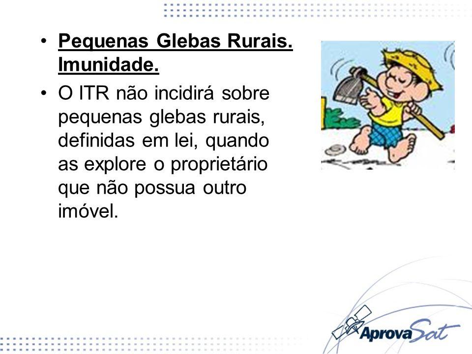 Pequenas Glebas Rurais. Imunidade. O ITR não incidirá sobre pequenas glebas rurais, definidas em lei, quando as explore o proprietário que não possua
