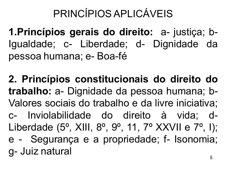 5 PRINCÍPIOS APLICÁVEIS 1.Princípios gerais do direito: a- justiça; b- Igualdade; c- Liberdade; d- Dignidade da pessoa humana; e- Boa-fé 2. Princípios