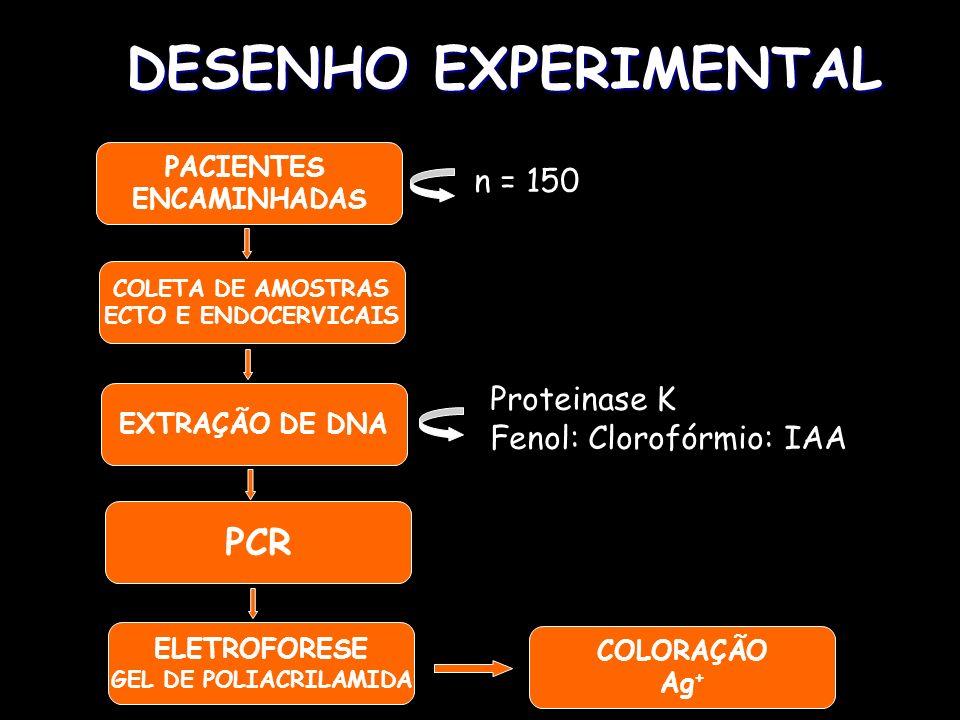 DESENHO EXPERIMENTAL PACIENTES ENCAMINHADAS n = 150 COLETA DE AMOSTRAS ECTO E ENDOCERVICAIS EXTRAÇÃO DE DNA COLORAÇÃO Ag + PCR ELETROFORESE GEL DE POL