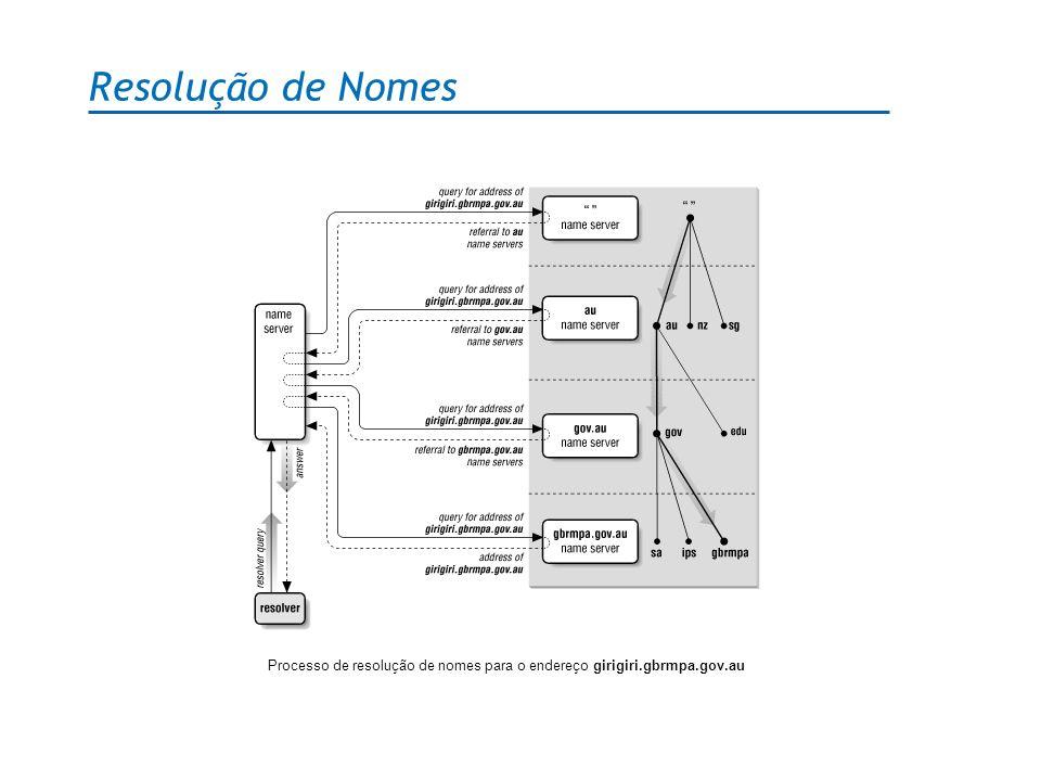 Resolução de Nomes Processo de resolução de nomes para o endereço girigiri.gbrmpa.gov.au