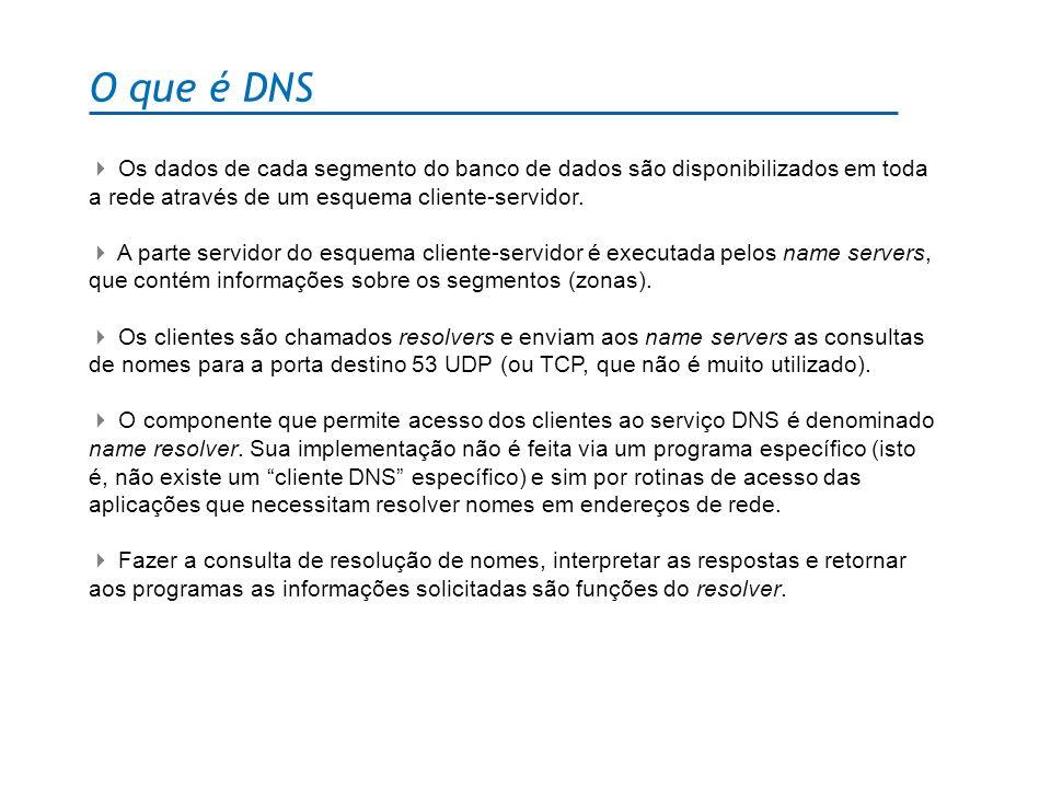 O que é DNS Os dados de cada segmento do banco de dados são disponibilizados em toda a rede através de um esquema cliente-servidor. A parte servidor d