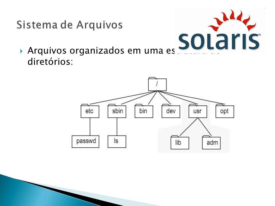 Arquivos organizados em uma estrutura de diretórios: