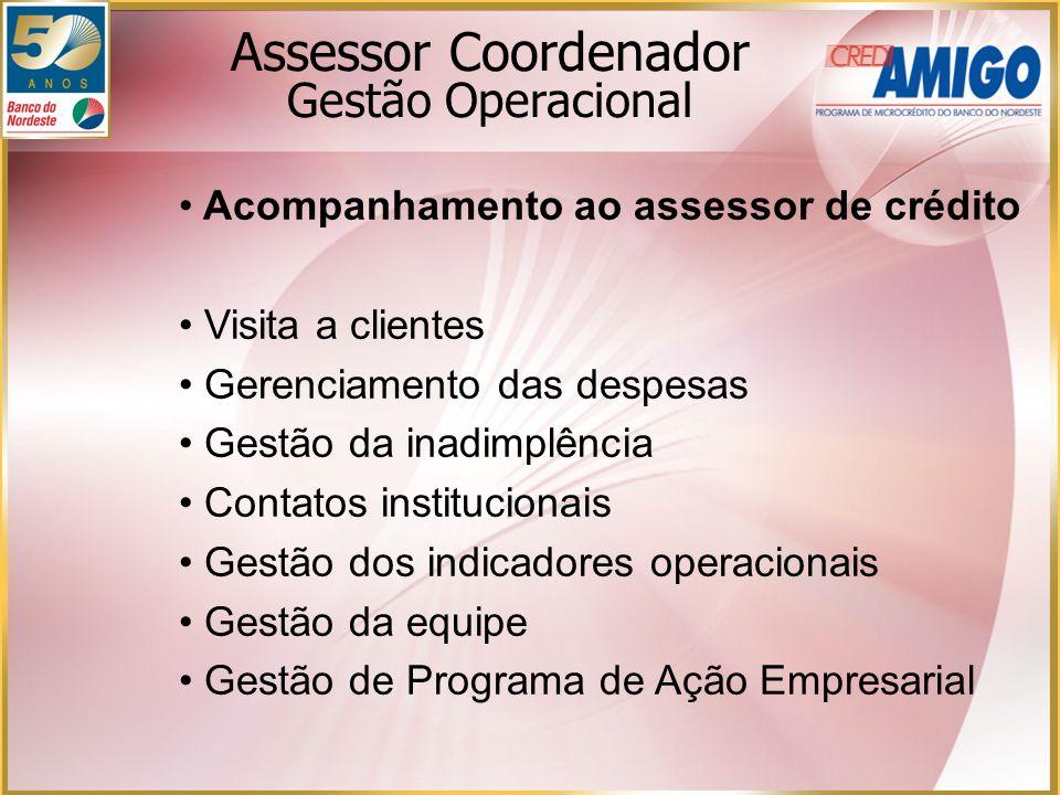 Assessor Coordenador Gestão Operacional Acompanhamento ao assessor de crédito Visita a clientes Gerenciamento das despesas Gestão da inadimplência Con