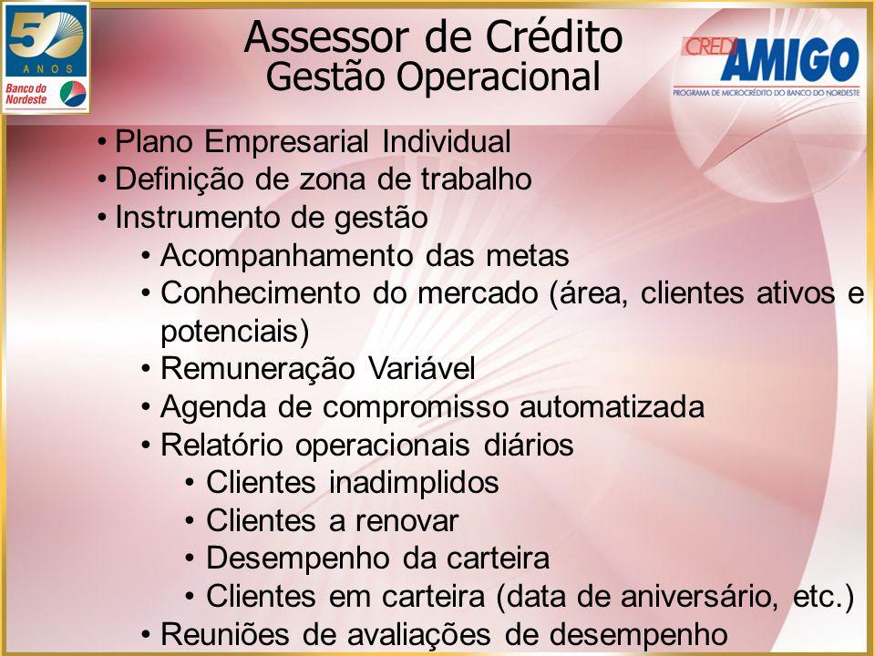 Assessor de Crédito Gestão Operacional Plano Empresarial Individual Definição de zona de trabalho Instrumento de gestão Acompanhamento das metas Conhe