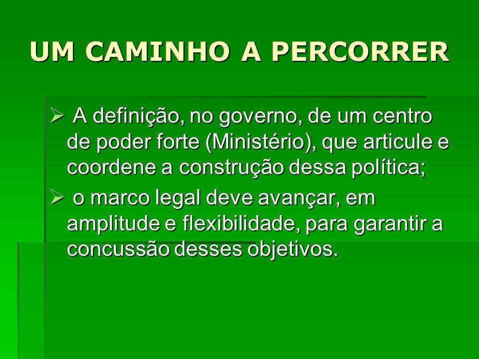 UM CAMINHO A PERCORRER A definição, no governo, de um centro de poder forte (Ministério), que articule e coordene a construção dessa política; A defin