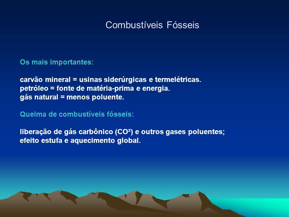 Combustíveis Fósseis Os mais importantes: carvão mineral = usinas siderúrgicas e termelétricas.