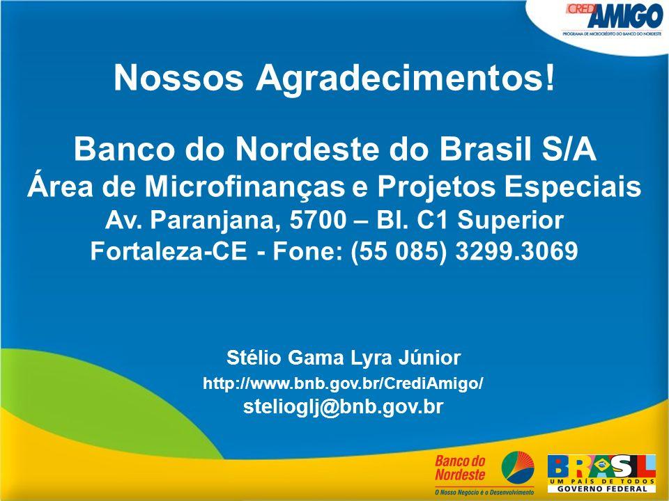 Stélio Gama Lyra Júnior http://www.bnb.gov.br/CrediAmigo/ stelioglj@bnb.gov.br Nossos Agradecimentos! Banco do Nordeste do Brasil S/A Área de Microfin