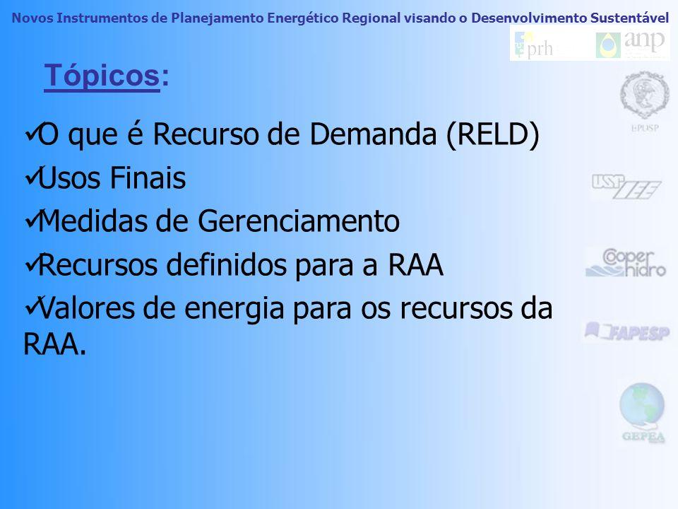 Planejamento Integrado de Recursos Energéticos no Oeste do Estado de São Paulo Novos Instrumentos de Planejamento Energético Regional visando o Desenvolvimento Sustentável FAPESP _ 03/06441-7 1ª CONFERÊNCIA SOBRE PLANEJAMENTO INTEGRADO DE RECURSOS ENERGÉTICOS REGIONAL Recursos Energéticos do Lado da Demanda Paulo Roberto Carneiropaulorcarneiro@gmail.compaulorcarneiro@gmail.com Geraldo Francisco Burani Setembro de 2009