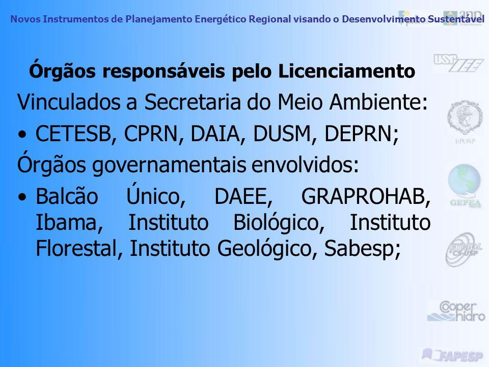 Novos Instrumentos de Planejamento Energético Regional visando o Desenvolvimento Sustentável Licenciamento Ambiental – Parâmetros Legais Constituição