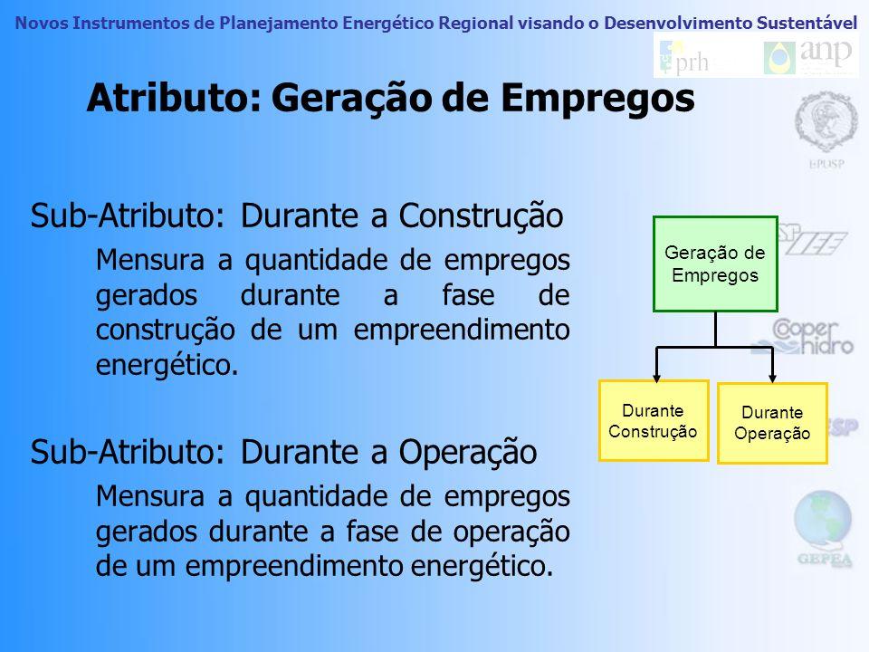 Novos Instrumentos de Planejamento Energético Regional visando o Desenvolvimento Sustentável Dimensão Social Geração de Empregos Percepção de Conforto