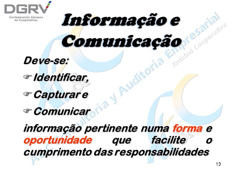 12 Informação e Comunicação Para controlar e tomar decisões: Contar com informação adequada e oportuna Para controlar e tomar decisões: Contar com informação adequada e oportuna