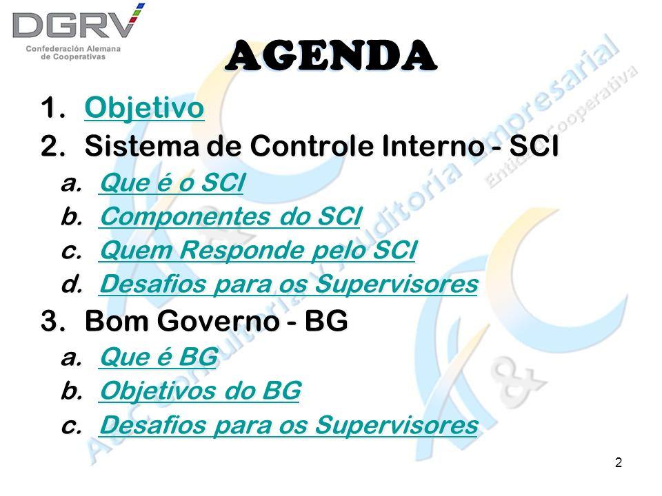 2 AGENDA 1.ObjetivoObjetivo 2.Sistema de Controle Interno - SCI a.Que é o SCIQue é o SCI b.Componentes do SCIComponentes do SCI c.Quem Responde pelo SCIQuem Responde pelo SCI d.Desafios para os SupervisoresDesafios para os Supervisores 3.Bom Governo - BG a.Que é BGQue é BG b.Objetivos do BGObjetivos do BG c.Desafios para os SupervisoresDesafios para os Supervisores 1.ObjetivoObjetivo 2.Sistema de Controle Interno - SCI a.Que é o SCIQue é o SCI b.Componentes do SCIComponentes do SCI c.Quem Responde pelo SCIQuem Responde pelo SCI d.Desafios para os SupervisoresDesafios para os Supervisores 3.Bom Governo - BG a.Que é BGQue é BG b.Objetivos do BGObjetivos do BG c.Desafios para os SupervisoresDesafios para os Supervisores